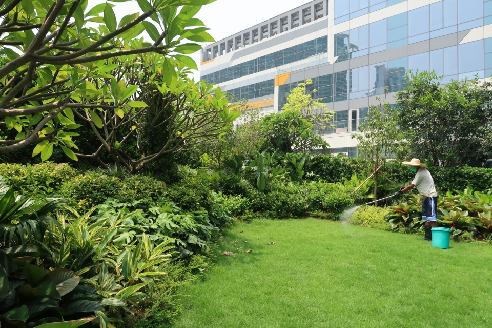 horticultural maintenace