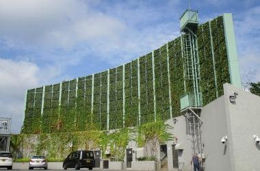 vertical greening (6)